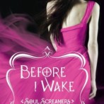 Review : Before I Wake by Rachel Vincent