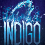Review : Indigo Awakening by Jordan Dane