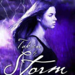 Review : Taken by Storm